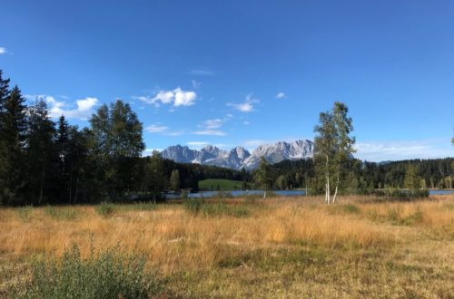 RARITÄT/ Almhütte mit Freizeitwohnsitz nahe Kitzbühel
